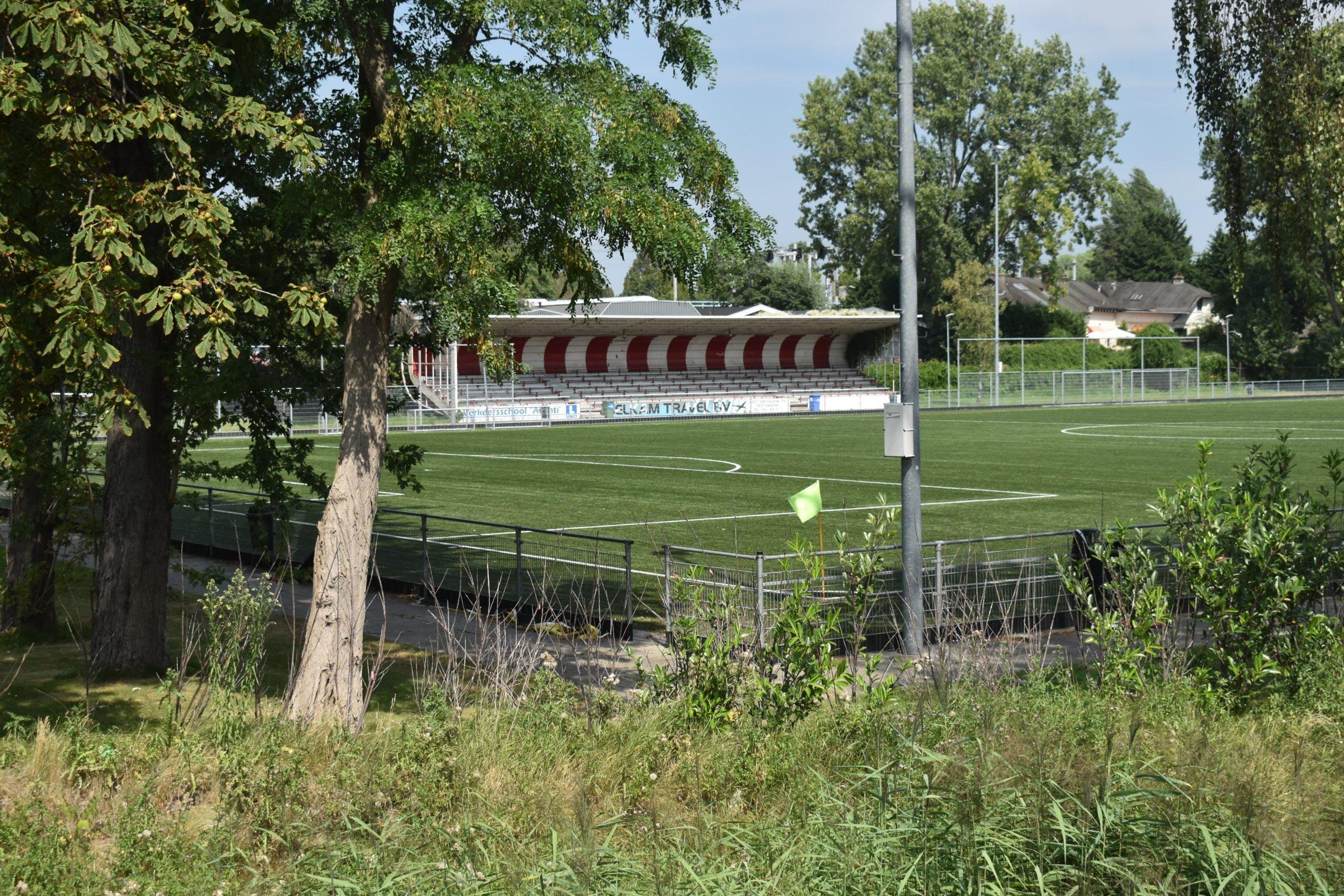 Rotterdam United 4 scaled